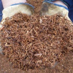 Мульчування грунту: користь, види мульчі, застосування